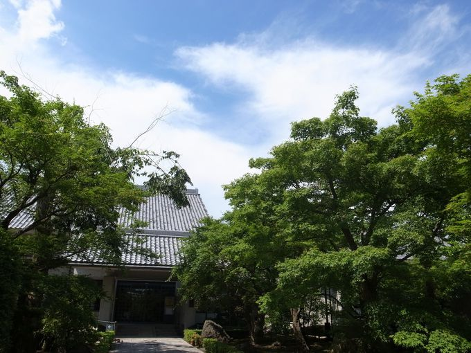 森の奥の美術館 相国寺承天閣美術館