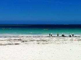 東アフリカの誇るリゾート島「ザンジバル」エメラルドグリーンの海に魅せられて