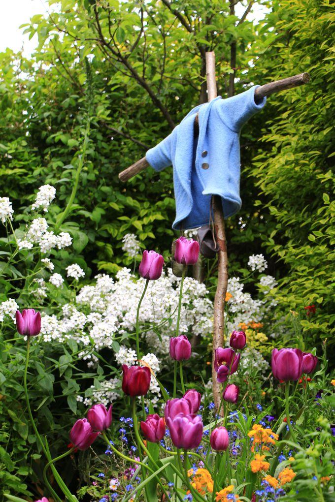 世界最大級のフラワー賞で金賞に輝いたお庭