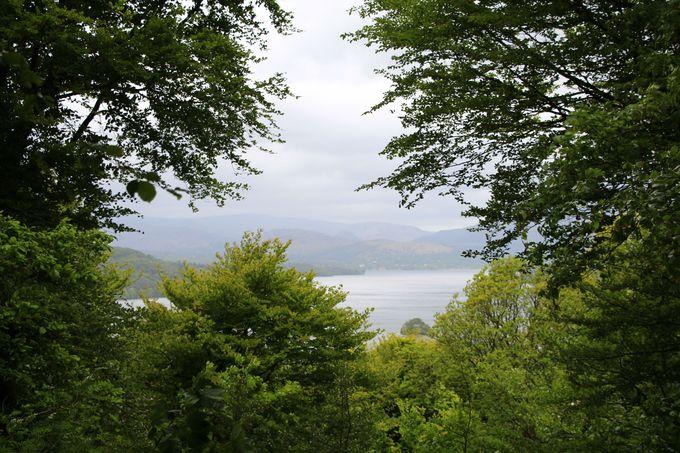 絶景ポイントその1、木々の間から湖を望む