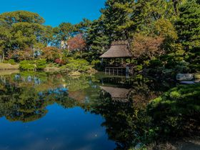 JR広島駅からすぐ!都会のオアシス「縮景園」で四季を楽しもう!