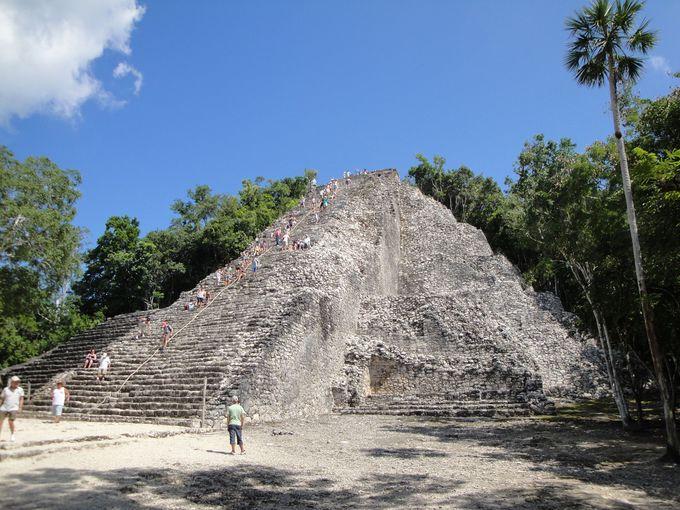 ピラミッドの頂上から見渡す密林は圧巻の景色!