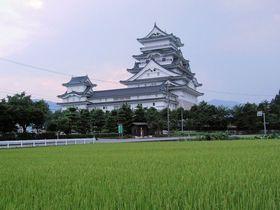 農村風景にそびえ立つ!日本で一番高い天守閣・越前 勝山城|福井県|トラベルjp<たびねす>