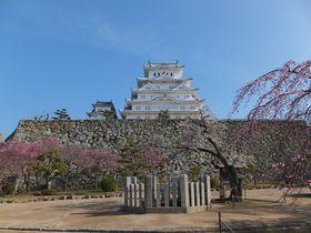江戸庶民を戦慄させたお菊井戸も!「姫路城」のマニアックな巡り方|兵庫県|トラベルjp<たびねす>