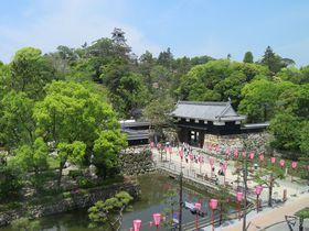 新たな見所も登場!現存天守・高知城の完存する本丸に刮目せよ|高知県|トラベルjp<たびねす>