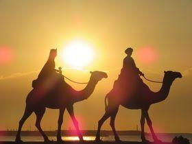 月の沙漠に日が昇る!?千葉御宿海岸は超穴場な日の出スポット