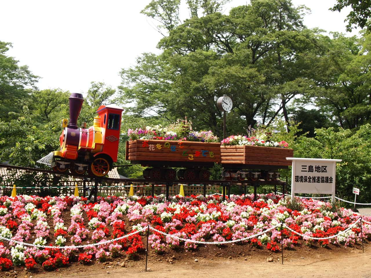 メルヘンチックな世界!!可愛らしい花に囲まれた列車