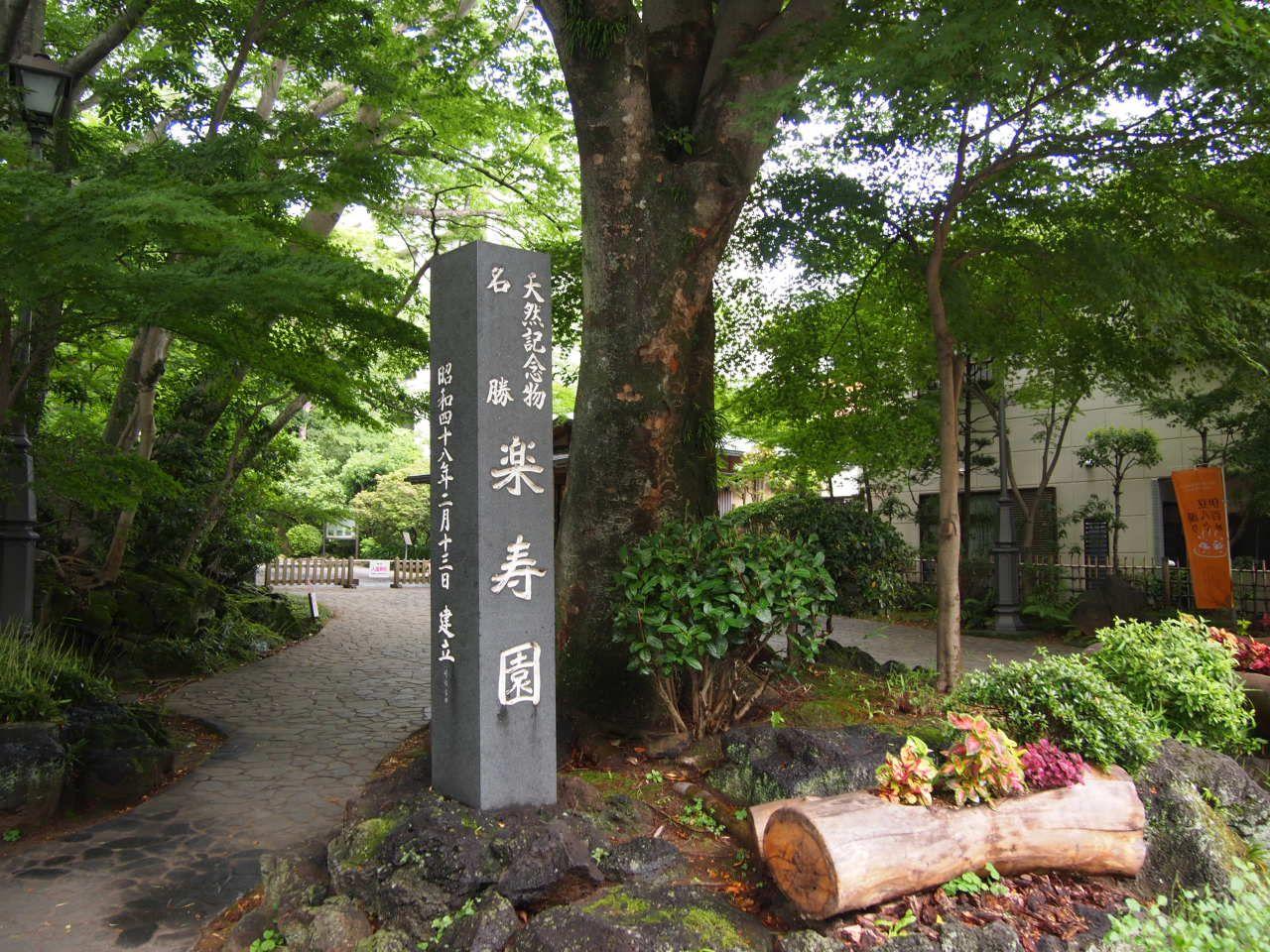 国の天然記念物指定!!歴史ある公園