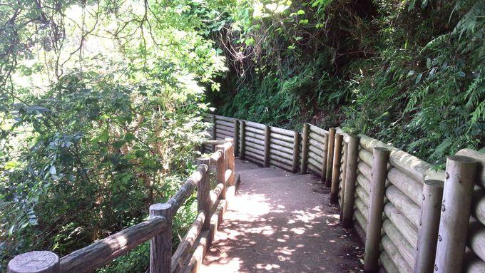 長い階段も旅の良き想い出に—