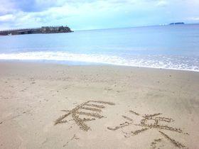 夏だけじゃない!熱海「長浜海浜公園」週末休憩のススメ!|静岡県|トラベルjp<たびねす>