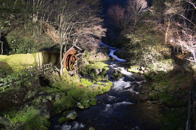 敷地内を流れる「滝の湯川」