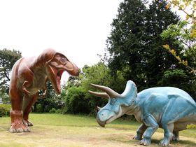 伊豆に恐竜襲来!?子連れで遊べる伊東「小室山公園」が大穴場|静岡県|トラベルjp<たびねす>