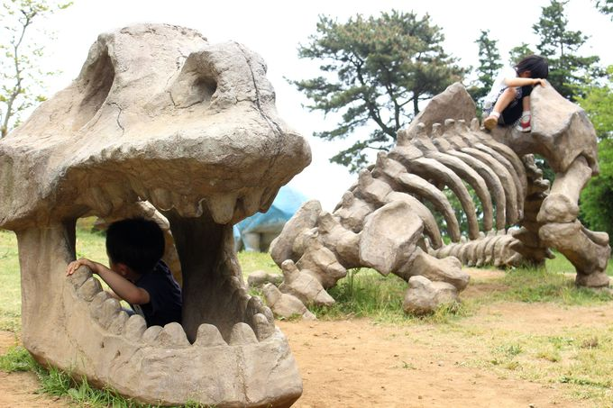 恐竜に興奮!