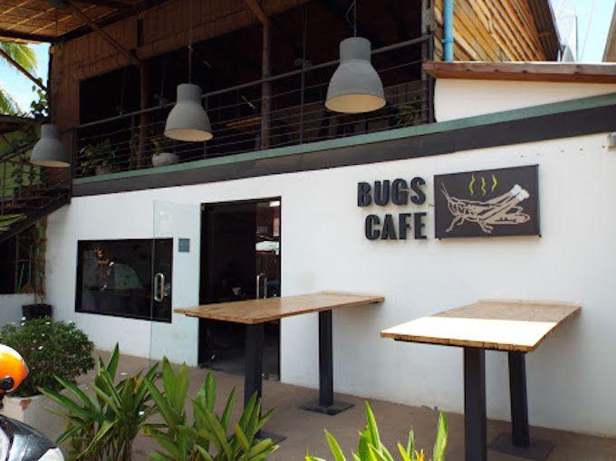 2.バグズカフェ(Bugs Cafe)