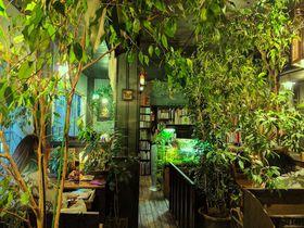 読書専門の静かな喫茶店!東京・高円寺の「アール座読書館」|東京都|トラベルjp<たびねす>