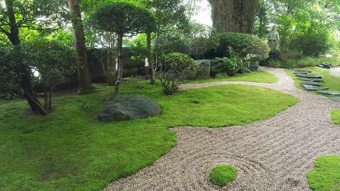 竹林までのアプローチは枯山水庭園