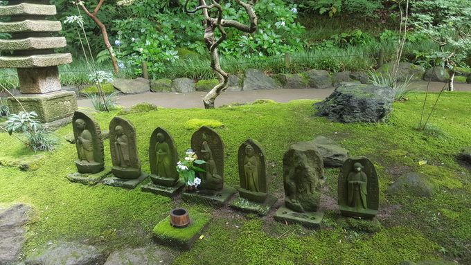苔も魅力な報国寺