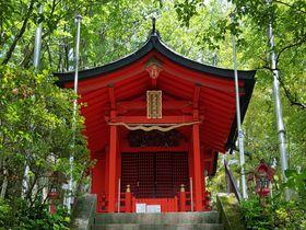 毎月13日以外でも!箱根「九頭龍神社・本宮」へ徒歩で行ってみよう|神奈川県|トラベルjp<たびねす>