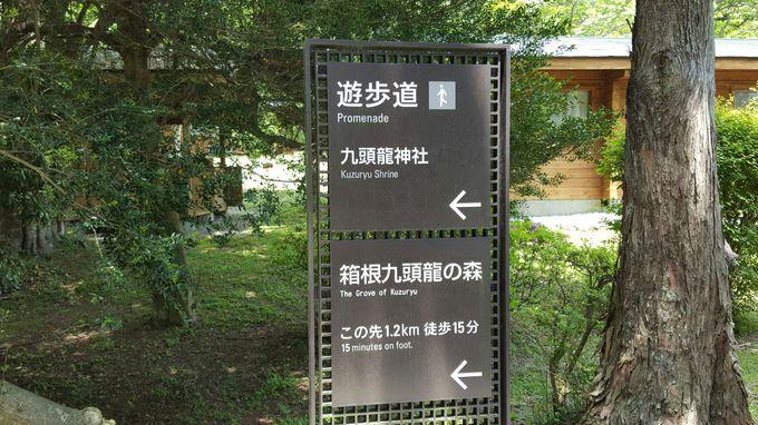 まずは「ザ・プリンス箱根芦ノ湖」を目指しましょう