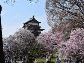 諏訪大社 だけじゃない!長野県上諏訪を満喫する5つのヒント!|長野県|トラベルjp<たびねす>