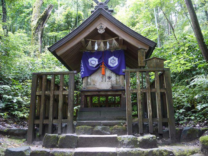 森の奥にある神社への参拝も忘れずに!
