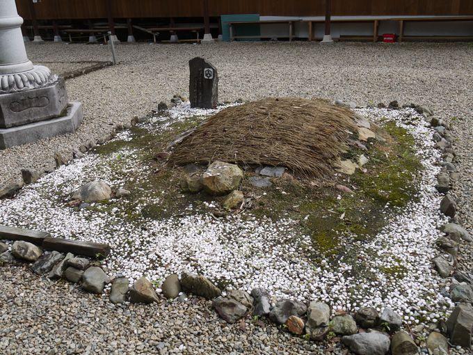 境内にいる大きな石亀さんにもお参りを!