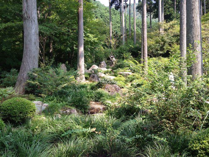 心癒される、二十五菩薩石庭