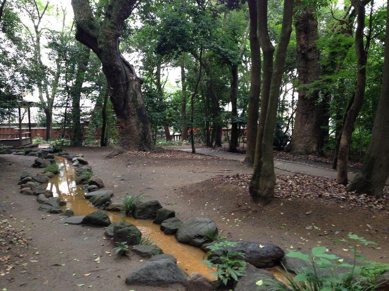本殿の奥が面白い!心休まる生田の森(神戸)で水みくじ