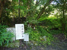 天から降ってきた山!?奈良・天香久山で聖地を巡るプチ登山