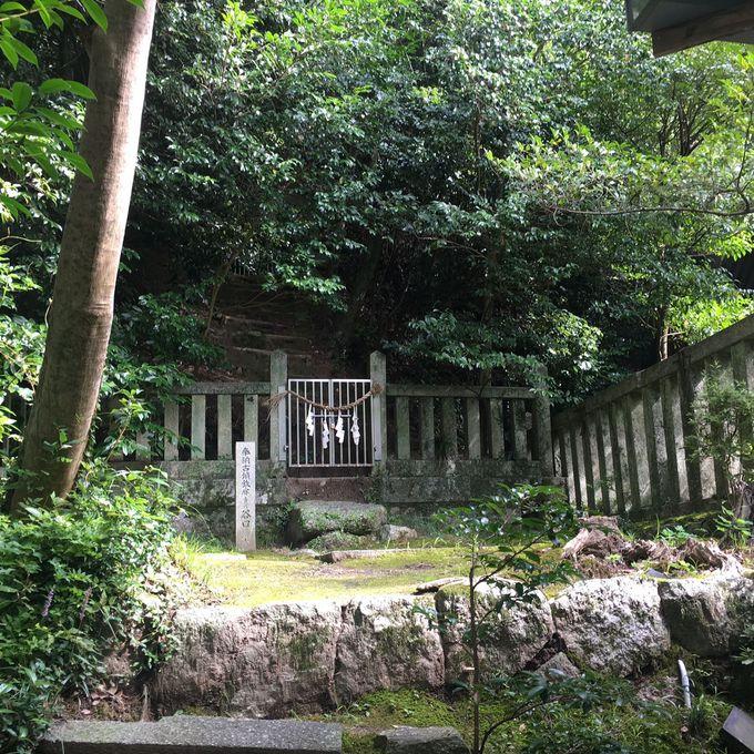 神社の中に、古墳を発見!?