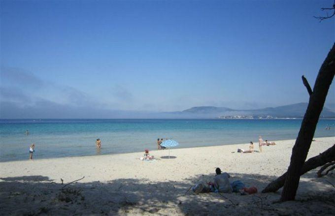 白砂と透き通った海が美しいマリア・ピア・ビーチ