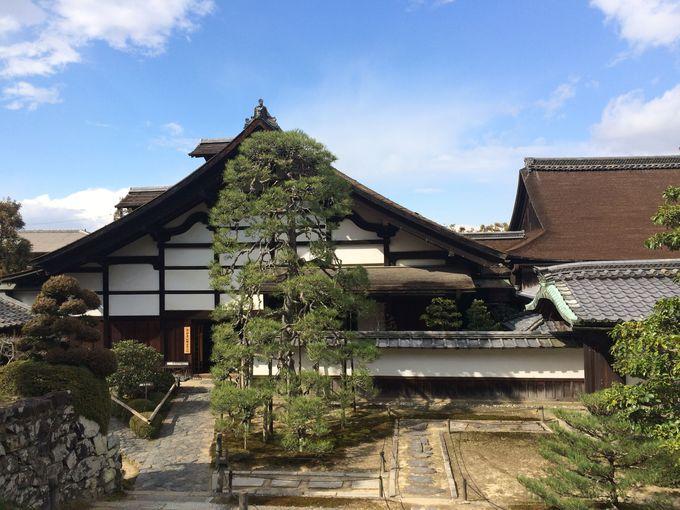 樹齢約400年の「枝垂れ松」と重要文化財の僧侶の居住場所「庫裏(くり)」