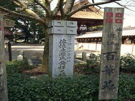 全国の佐々木さんへ。姓も恋も百花繚乱、滋賀「沙沙貴神社」