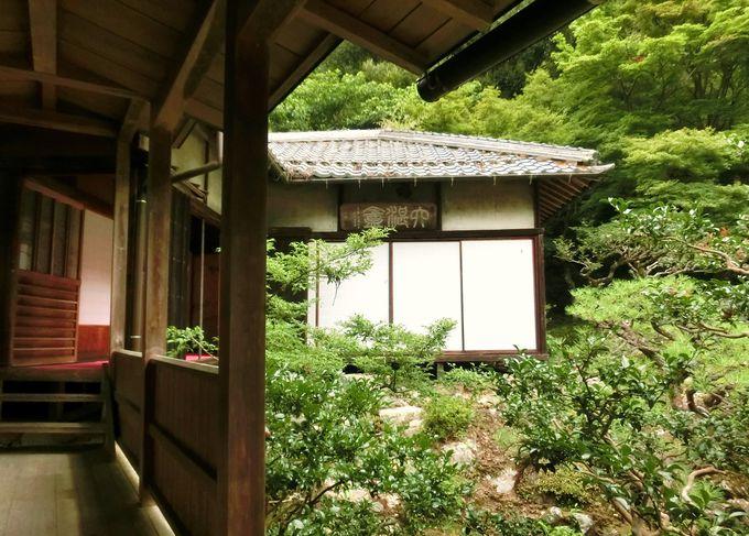 枯山水の庭園を囲む「客殿」と書院「六湛庵」
