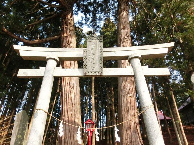 新渡戸家の氏神「安野稲荷神社」