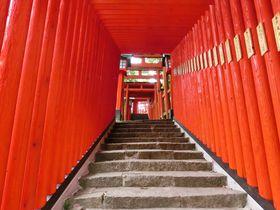 日本五大稲荷の一つ!島根・津和野「太皷谷稲成神社」千本鳥居を抜けて|島根県|トラベルjp<たびねす>