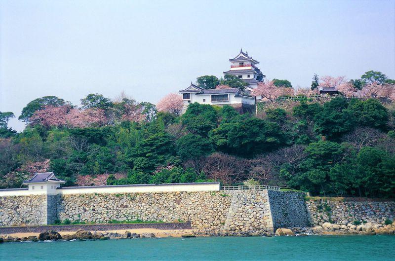 """春には桜と藤が花開く!""""舞鶴城""""とも称される佐賀「唐津城」"""