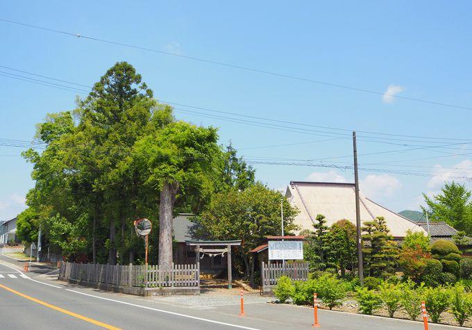 """「初生衣神社」へのアクセスと""""初生衣""""の意味"""
