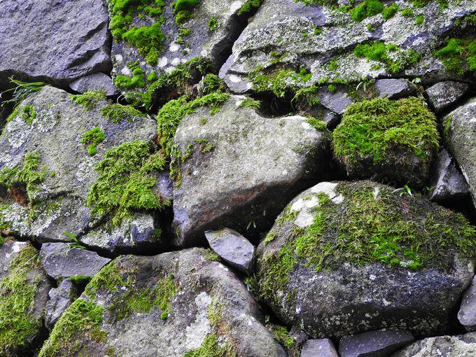 松江城石垣のハート型石からもパワーをもらおう!