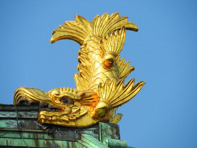 日本全国から、エリザベートのウィーンまで出かけた金シャチ