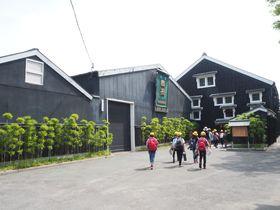 愛知半田の「紺屋海道」!醸す文化と謎の小道を満喫する小散策