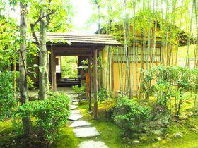 愛知犬山有楽苑で国宝茶室如庵、静寂の庭園、抹茶を楽しむ旅|愛知県|トラベルjp<たびねす>