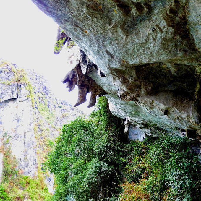 サプライズ鍾乳洞、絶景と奇岩にもビックリ