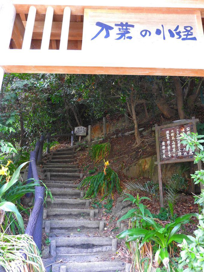 西浦温泉パームビーチから「万葉の小径」へはまるでタイムスリップ!