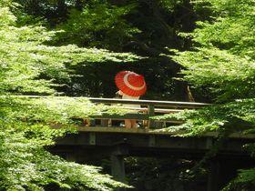 緑と滝と刀剣の名古屋「徳川園」と「徳川美術館」の歩き方|愛知県|トラベルjp<たびねす>