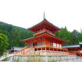 比叡山延暦寺、凛とした空気漂う根本中堂と東塔エリアを歩く|滋賀県|トラベルjp<たびねす>