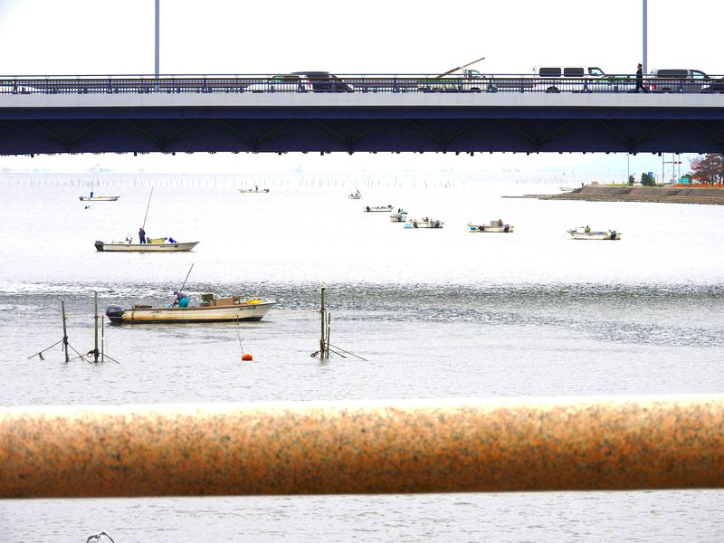5ヶ所の縁結びパワースポットで大願成就!?松江・水辺の風景散策