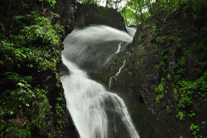 さぁ、滝を楽しもう!