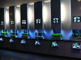 淡水魚ファン必見!埼玉県羽生市「さいたま水族館」に行こう!|埼玉県|トラベルjp<たびねす>