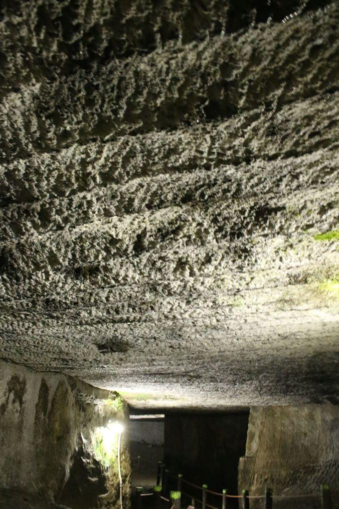西伊豆にある神秘的な「室岩洞」...